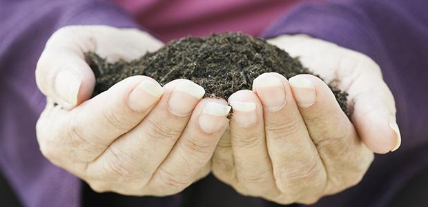 Come creare l orto alla finestra mamme magazine - Quanto dura periodo finestra ...