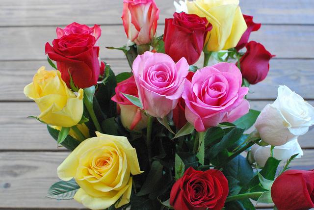 Qual il significato dei colori delle rose mamme magazine - Significato delle tavole di rorschach ...