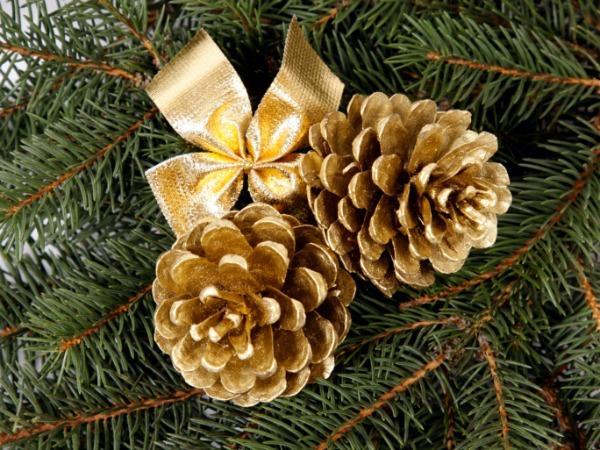 Come fare pigne glitterate per natale mamme magazine - Pigne decorate natalizie ...