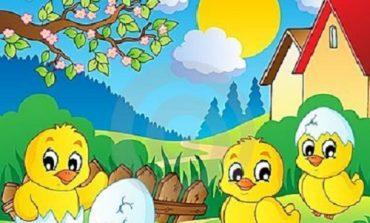 Canzoni sulla primavera scuola infanzia bambini