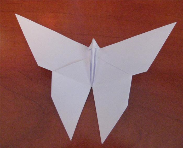 Schema per Origami Farfalla Facile