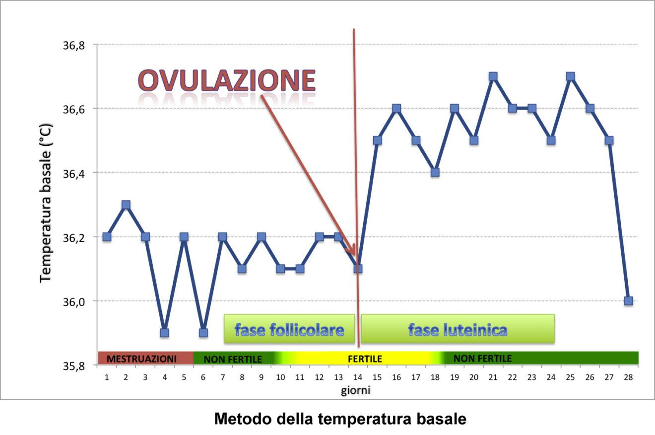 Calendario Ovulazione Preciso.Calcolo Della Temperatura Basale Che Cos E E Come Si Fa